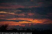 Dawn on the veld, safari camp. ©2015 Jeane Vogel Studios